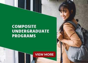 Composite UG Programs